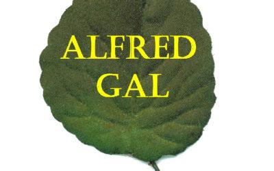 Alfred Gal