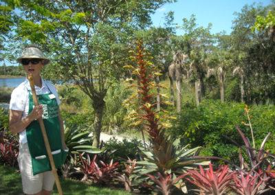 botanical-garden-09