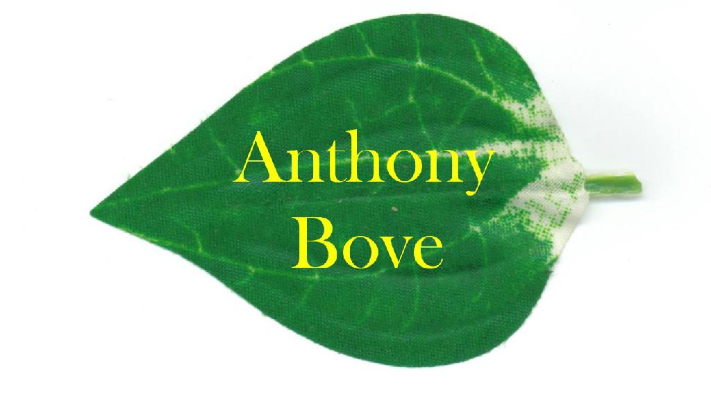 Anthony Bove