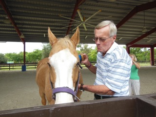 horse-therapy-15