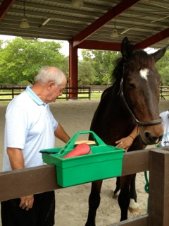 horse-therapy-22