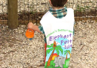 elephant-fest-2014-14